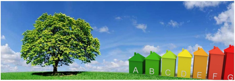 duurzaam-boomhuis