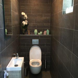 toilet-fonteintje